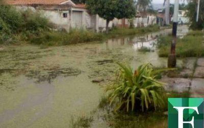 En Mata Redonda y La Punta temen que el lago de Valencia ocasione una tragedia