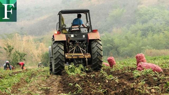 La producción agroalimentaria en Venezuela cayó 30% en 2020