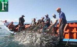 80% de la flota pesquera de Sucre está paralizada por falta de combustible