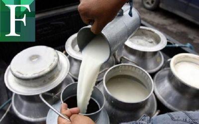 Cavilac pidió al Estado suspender importaciones de lácteos