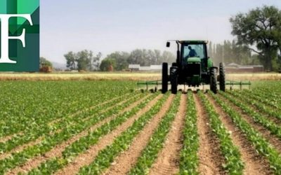 Sociedad Venezolana de Ingenieros Agrónomos exige plan de seguridad alimentaria