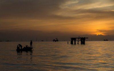 OPEP y sus aliados acuerdan un aumento de producción gradual hasta diciembre