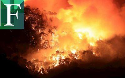 ONU advierte que desastres mundiales están relacionados con el cambio climático